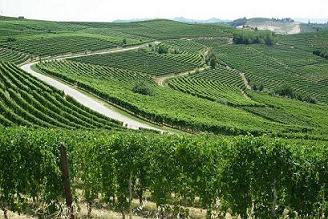 esbjerg vinhandel
